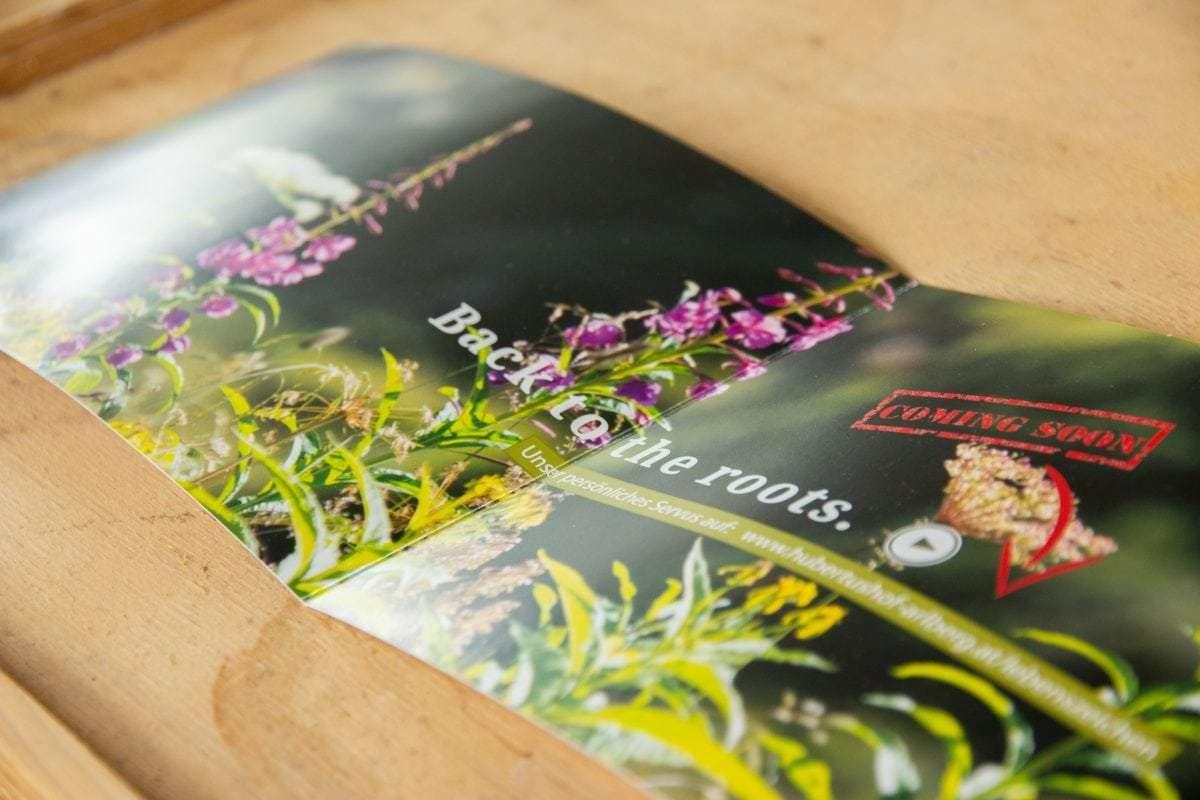 Schöne Gestaltung - Printprodukte und HOmepages